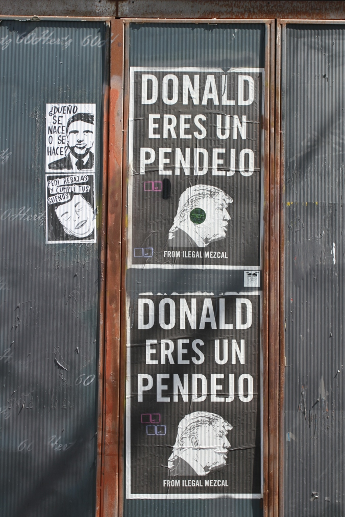 Donald eres un Pendejo, Berlin Street Art, Germany