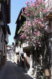 Mogarraz, Sierra de Francia, Castilla y Leon, Spain