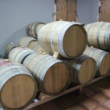 Adega Algueira vineyard, Ribeira Sacra, Galicia, Spain