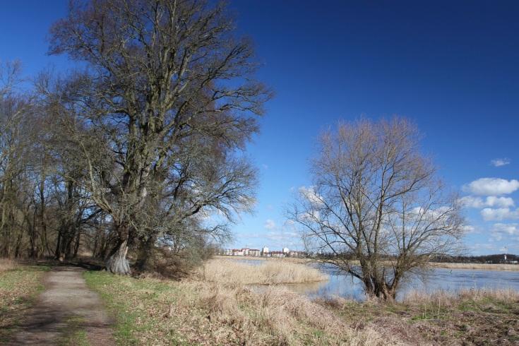 River Oder, Frankfurt an der Oder, Germany