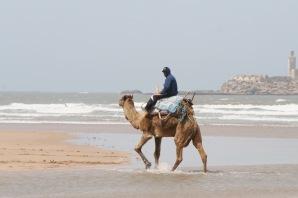 Beach, Essaouira, Morocco