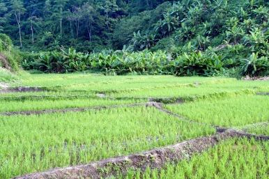 Kayan village, Chiang Mai, Thailand